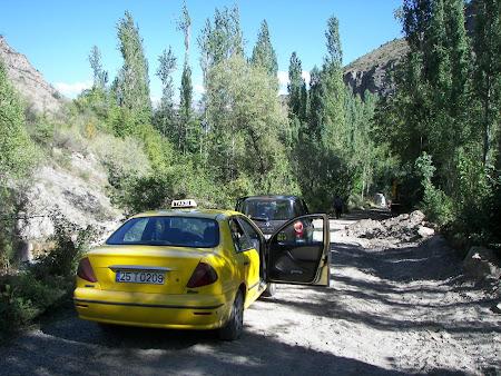 Transport Turcia: taxi vale Tortum