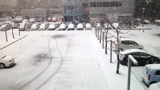 [写真]会場からみえる雪景色