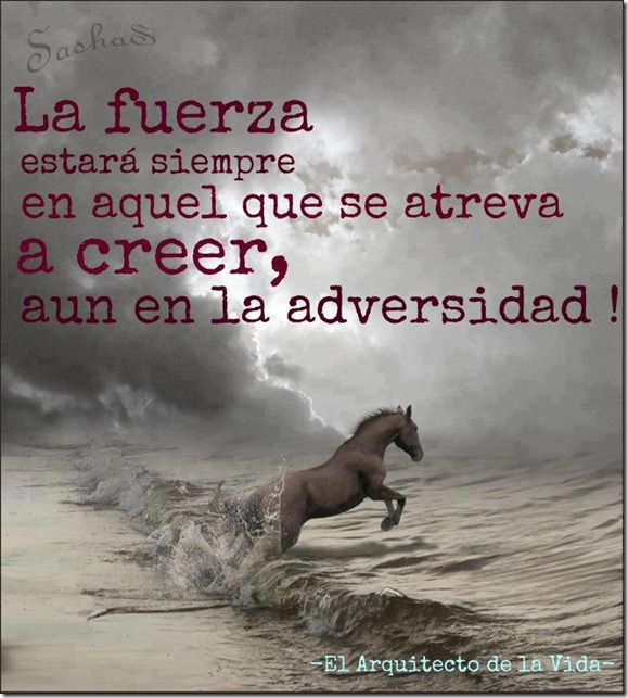 adversidaT