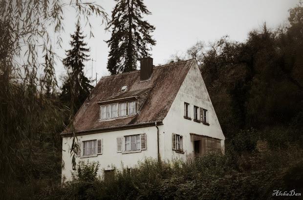 20141025_Dornenhaus-01.jpg