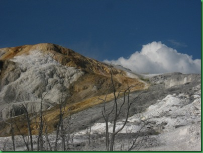 Mammoth Hot Springs Terraces (251)