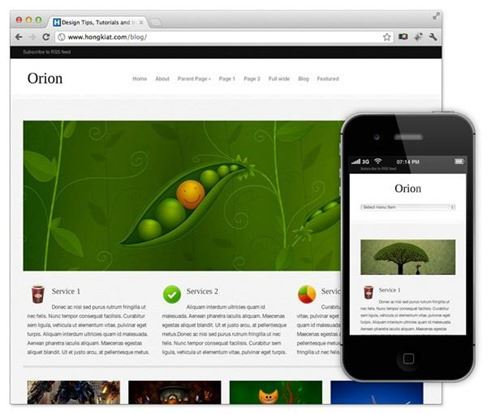 orion-theme-wordpress