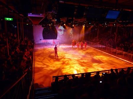 07. Spectacol patinaj artistic.JPG