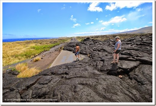140724_HawaiiVolcanoesNP_0105