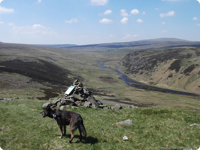 superdawg reccies the best of teesdale walk