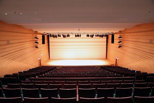 9 表演廳舞台_自後面座位往前 2.jpg