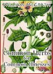 Ervas comuns para doenças comuns
