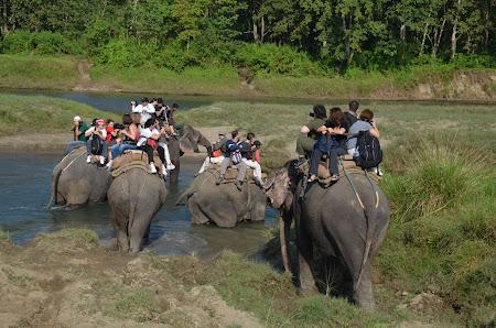 Safari pe elefant Nepal