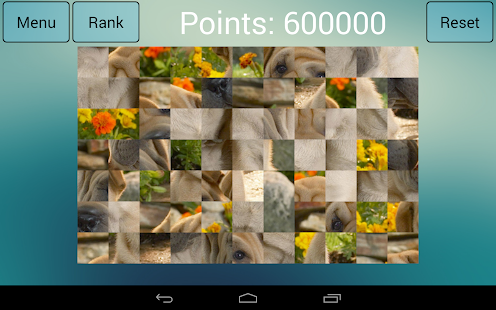 Jigsaw Puzzle Dogs Screenshot 10