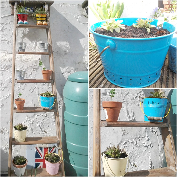 recycled garden planters and ladder display