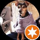 Immagine del profilo di sara ventura