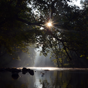 Clearfork River Sunrise by Chuck Hagan - Landscapes Sunsets & Sunrises ( , Earth, Light, Landscapes, Views )