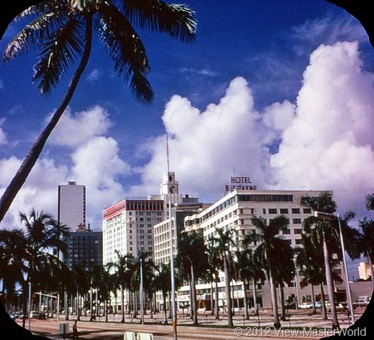 View-Master Miami and Miami Beach (A963), Scene 2: Biscayne Blvd