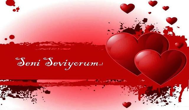 Amor, Amor Eterno Amor, Belezas da Natureza, Flores e Cores, Happy Valentine's Day, Valentine´s Day, VALÉRIA MILANÊS, Santo Agostinho