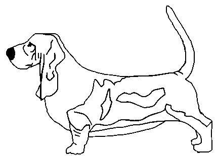 Dibujos De Razas De Perros Para Pintar