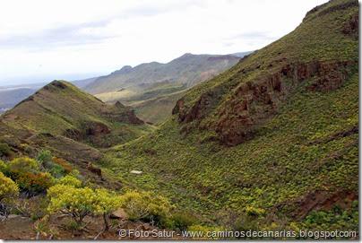 7882 Temisas-Agüimes(Barranco Hondo)