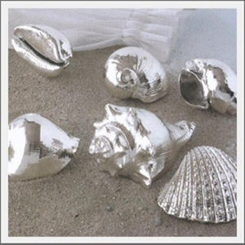 kaboodle silver shell