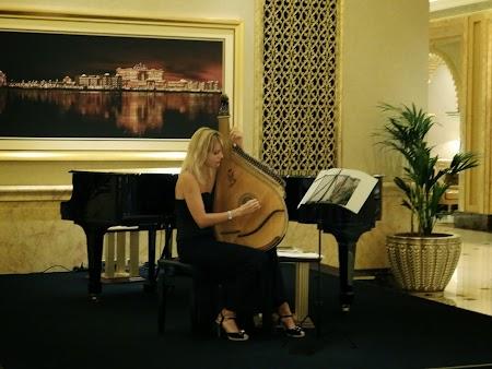 Canta la harpa