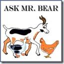 Ask Mr Bear copy