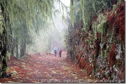 6819 Barranco Andén-Cueva Corcho(Barranco Andén)