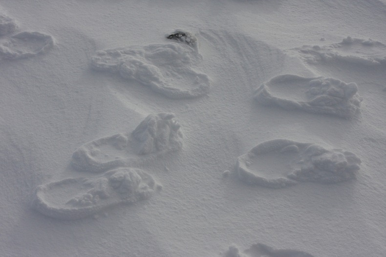 raised-footprints-snow-8