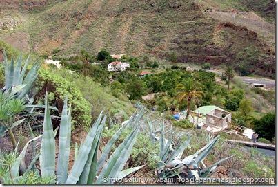 4407 La Solana-Cortadores-El Sao