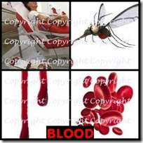 BLOOD- 4 Pics 1 Word Answers 3 Letters