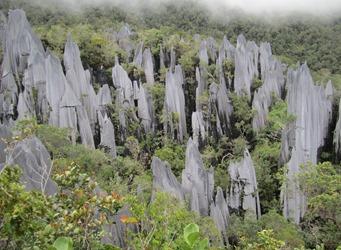Pinnacoli di Mulu