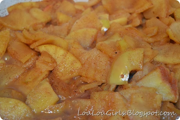 Homemade-Applesauce-Recipe (14)