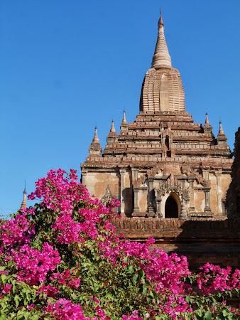 Obiective turistice Myanmar: Templu Bagan