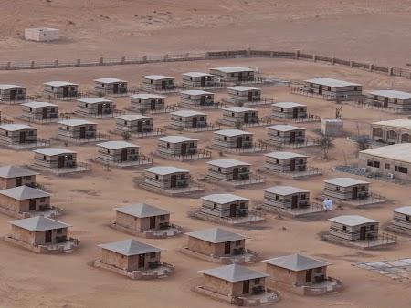 38. Arabian Oryx Camp in desertul din Oman.JPG