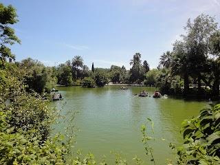 Etang au Parc Ciutadella à Barcelone