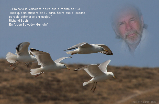 Richard Bach Oak Park Illinois 23 De Junio De 1936