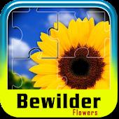 Bewilder Flowers