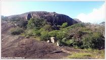 Пейзаж. Шри-Ланка. Фото Холоденина А. www.timeteka.ru