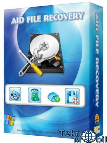 Aidfile Recovery Professional Full