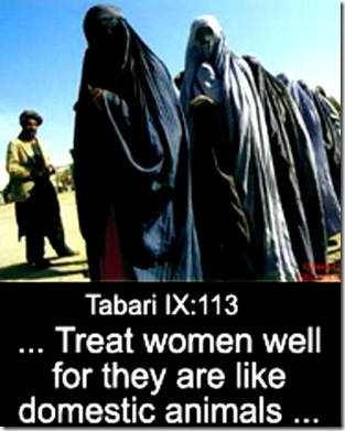 Tabari IX-113 on women