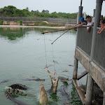 Тайланд 12.05.2012 5-59-44.JPG