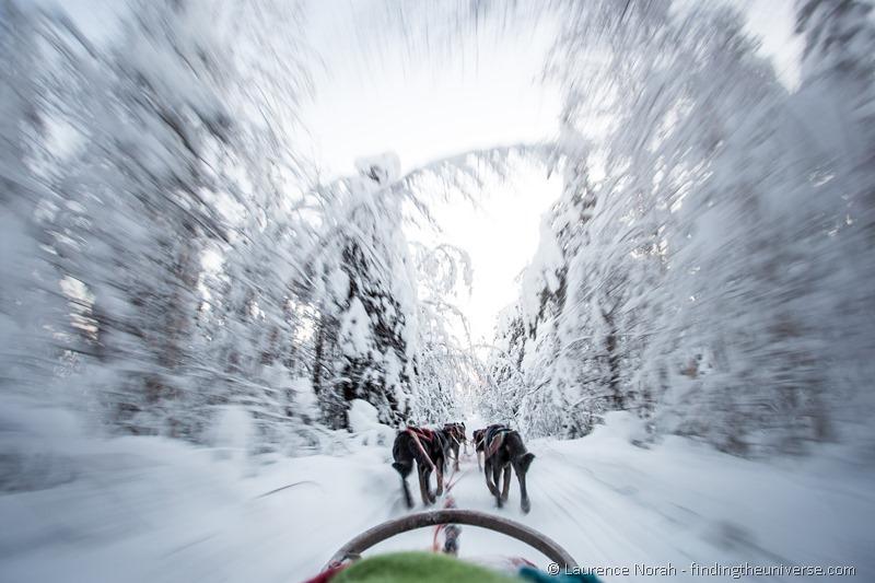 husky dogs running through the snow finland lapland