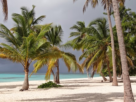 Vacanta Republica Dominicana: Plaja pustie in Saona