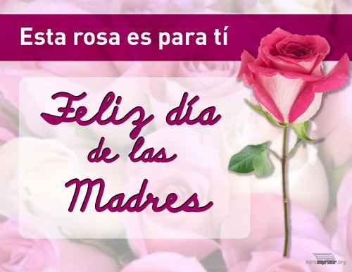 Esta rosa es para ti madre
