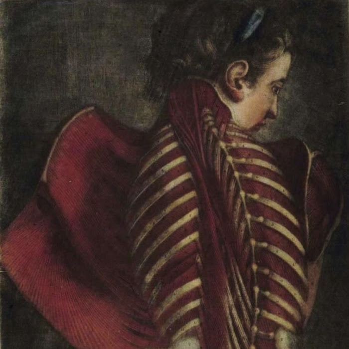 Joplin Rice - Spine Adagio Part II & The Prince