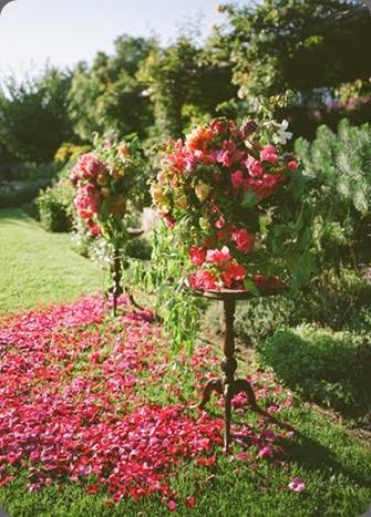 1582 flowerwild1