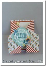 Blooming Marvellous, The Craft Spa, SAB 2013, Stampin Up, SU   (9)