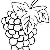27-coloriage_fruit.jpg