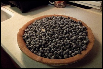 Blueberry pie 006