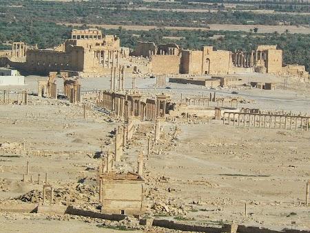 26. Panorama Palmyra.JPG