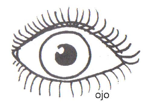 Dibujos De Ojos Infantiles Para Colorear: DIBUJOS PARA COLOREAR OJOS