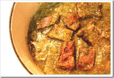 Braised Short Ribs in Tomatillo Sauce | step by step instructions with photos of the process