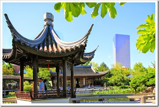 140711_LanSuChineseGarden_047